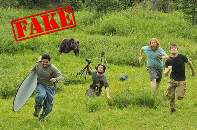 viral pictures