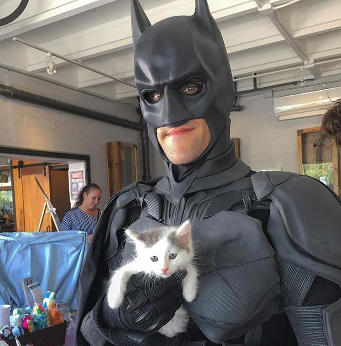 Rescues Poor Animals