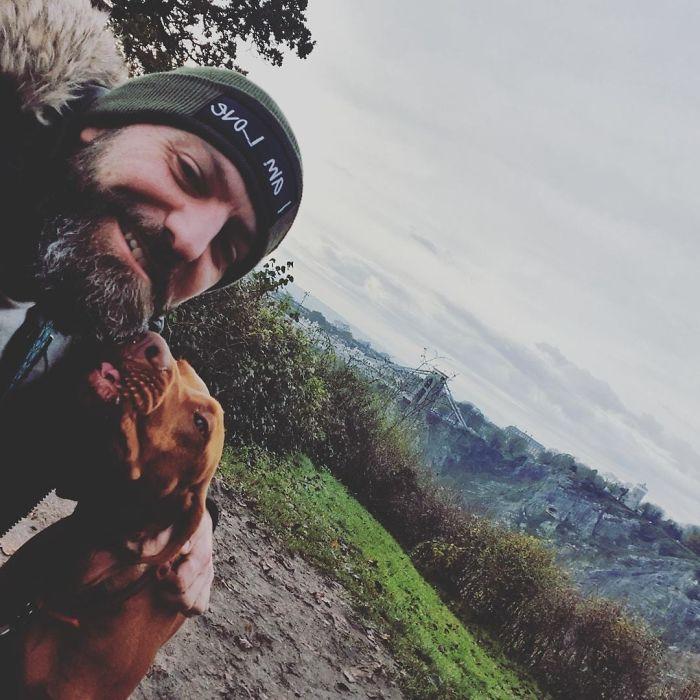 dogs companion